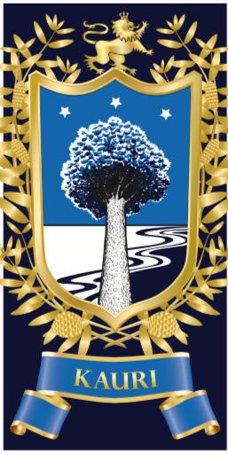 Prospectus, Birkdale Intermediate School